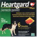 ハートガードプラス中型犬用 11kg〜22kg未満商品画像