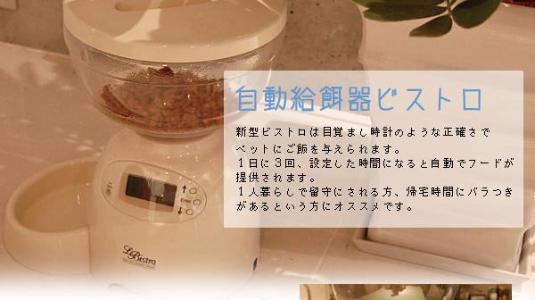 自動給餌器ビストロ(自動給餌器)【送料無料】の特徴1